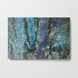 Bark Abstract 4 Metal Print