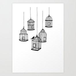 Birdcages Illustration Art Print