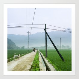 Vietnam Rice Fields - Two Art Print