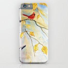 Cardinal on birch Tree iPhone Case