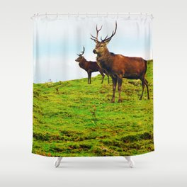 Stags on the hill Shower Curtain