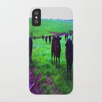 cows iPhone & iPod Cases featuring Cows by 13th Moon Social Club
