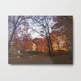 Longbrook Park Metal Print