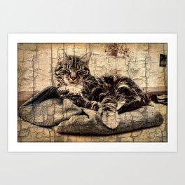 most phanastic tomcat ever Art Print