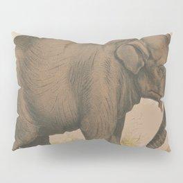 Vintage Elephant Illustration (1874) Pillow Sham