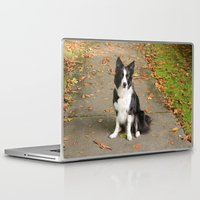 border collie Laptop & iPad Skins featuring Sparkles the Border Collie by shamik