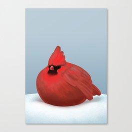 After Christmas cardinal bird Canvas Print