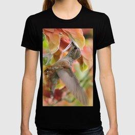 Little Ms. Hummingbird in for More Licks T-shirt