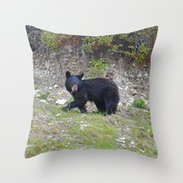 Young black bear munches on a dandelion in Jasper National Park Throw Pillow