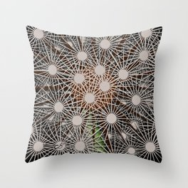 Abstract Dandilion Seeds Throw Pillow