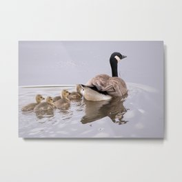 Swimming Lesson Metal Print