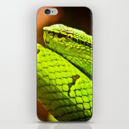 Slithering Snake iPhone Skin