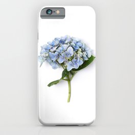 Blue hydrangea flowers iPhone Case