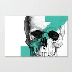 skull7 Canvas Print