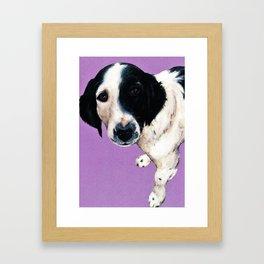 Charlie on lilac Framed Art Print