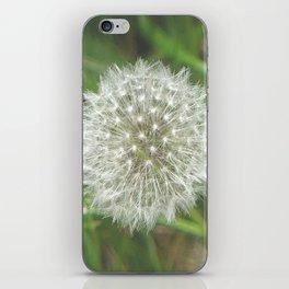Dandelion Seedhead iPhone Skin