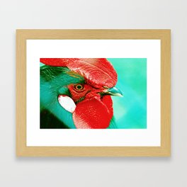 Fire Rooster Framed Art Print