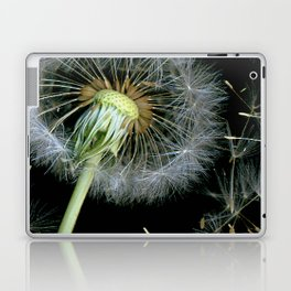 Dandelion Seeds Blowing in the Wind, Scanography Laptop & iPad Skin