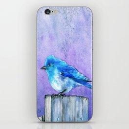 Bluebird Bliss iPhone Skin