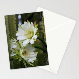 Cereus Morning  Stationery Cards