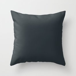Perfect Day at the Pond ~ Denim Feathers Throw Pillow