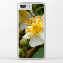 Flower AA Clear iPhone Case