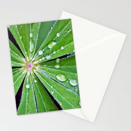 Raindrops on a Lupin Leaf Stationery Cards