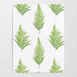 Fern seamless pattern. Poster