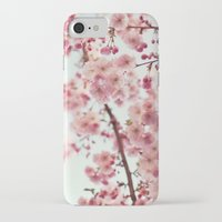 cherry blossoms iPhone & iPod Cases featuring Cherry blossoms by Photography by Karin A