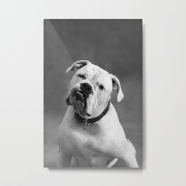 Johnson Metal Print