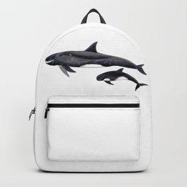 Pygmy killer whale Backpack