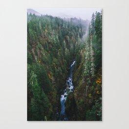 Skokomish River Fog Canvas Print