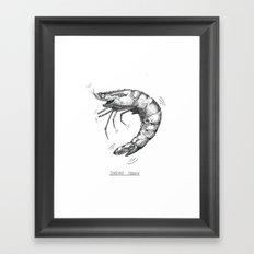 Shaky Prawn Framed Art Print
