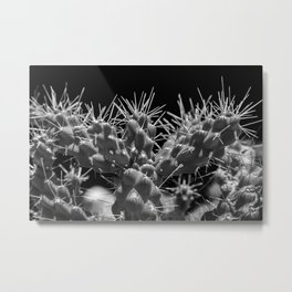 Touch Me If You Dare Metal Print