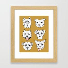 Pittie Pittie Please! 2 Framed Art Print
