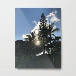 Hawaiian Sun peaking through the Trees Metal Print