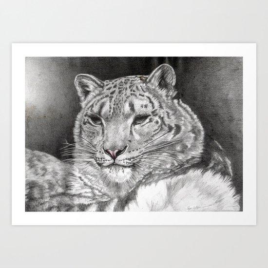 The Snow Leopard 2nd  Art Print