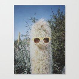 Cool Cactus Canvas Print