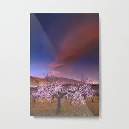 Lenticular clouds over Almond trees Metal Print