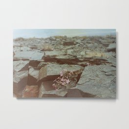 The Perseverance of Mother Nature Metal Print