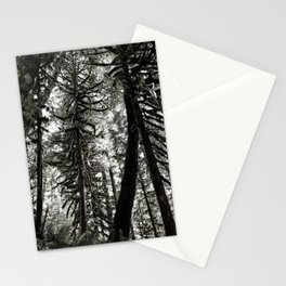 Oregon Woods Abstraction Stationery Cards