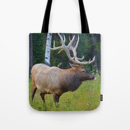 Bull Elk shows off his rack in Jasper National Park Tote Bag