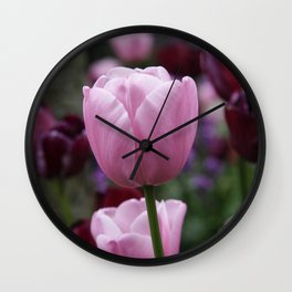 Tulips on Pink Wall Clock