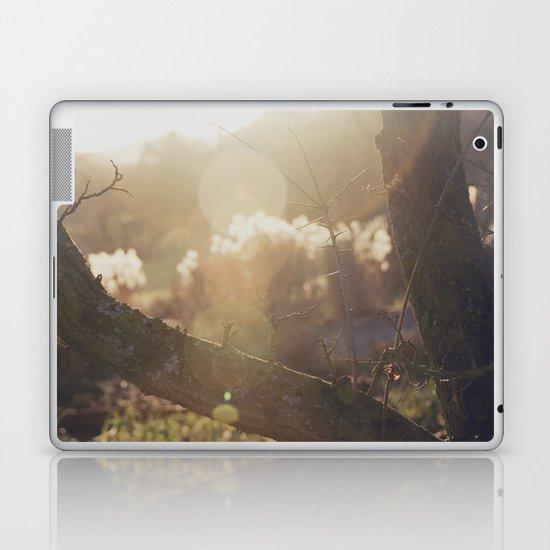 garden sunburst... Laptop & iPad Skin