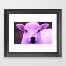 Animals Of The Rainbow Lamb Framed Art Print