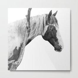 Horse   Landscape Photography   Tree Metal Print