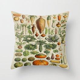 VEGETABLES Legumes Et Plantes Potageres Vintage Scientific Illustration French Language Encyclopedia Throw Pillow