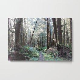 Quinault Rain Forest Metal Print