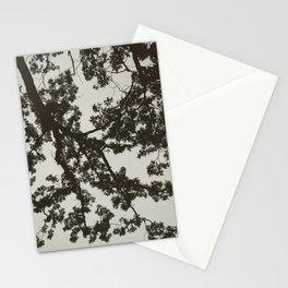 B&W Tree Silhouette Stationery Cards