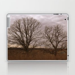 Pair of Winter Trees Laptop & iPad Skin
